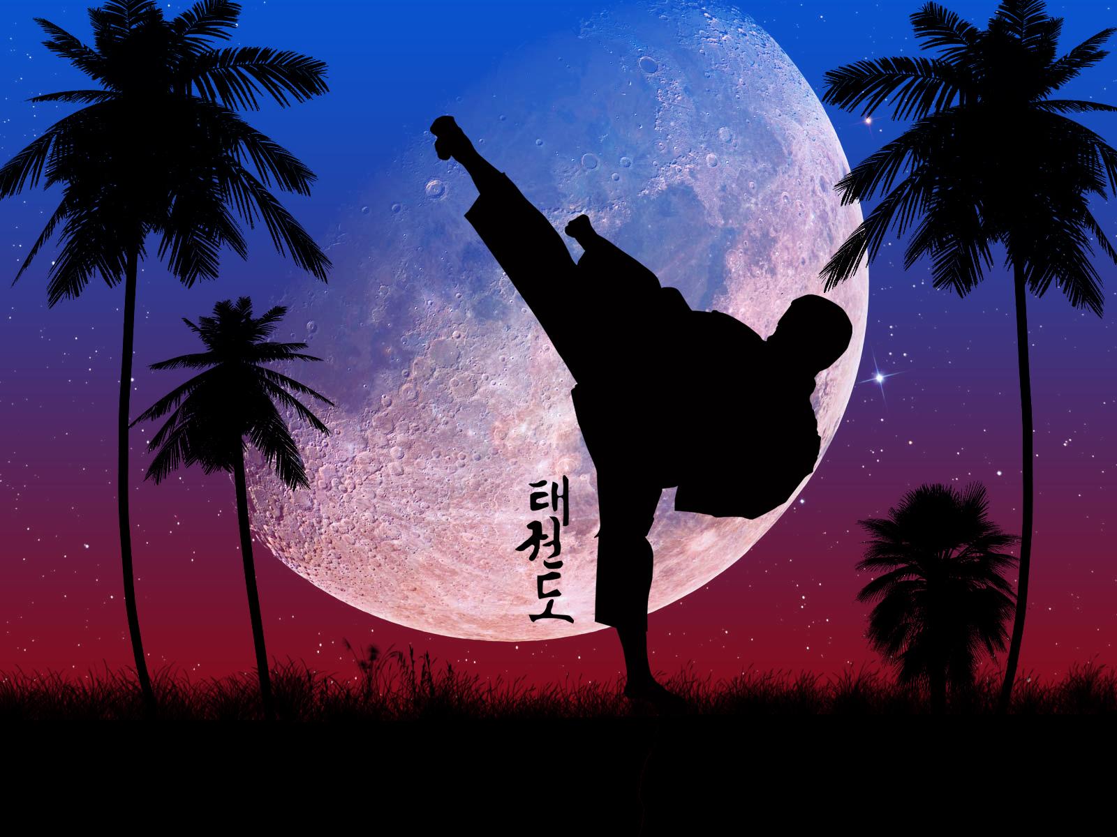 Taekwon_Do_by_Belafon
